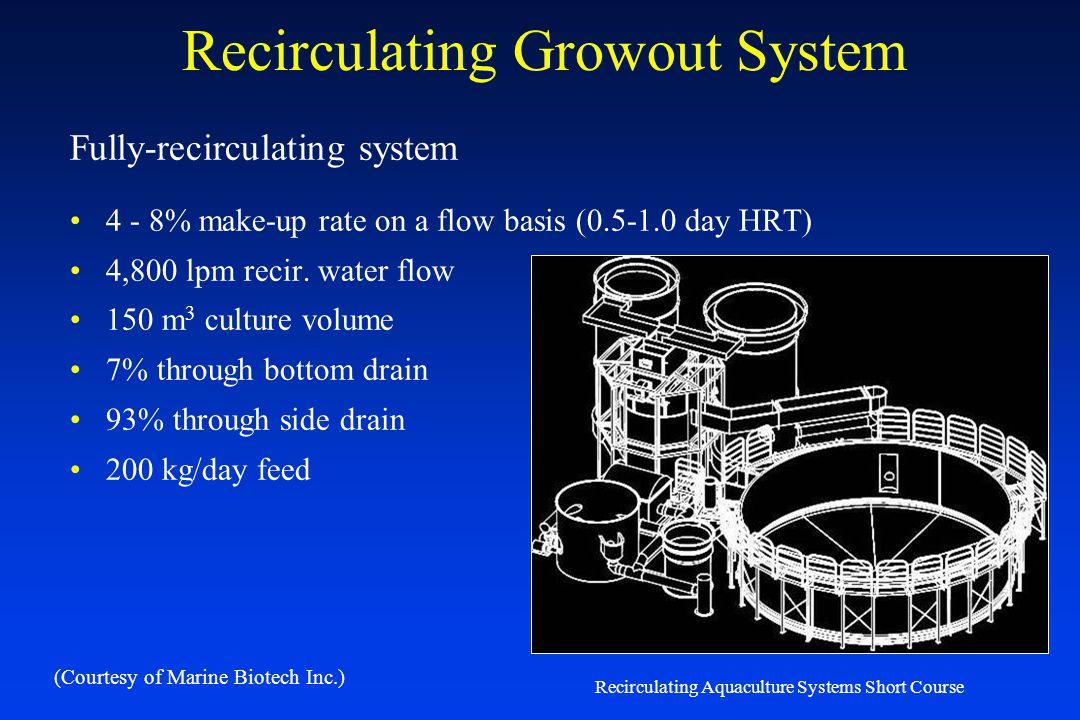 Recirculating Growout System