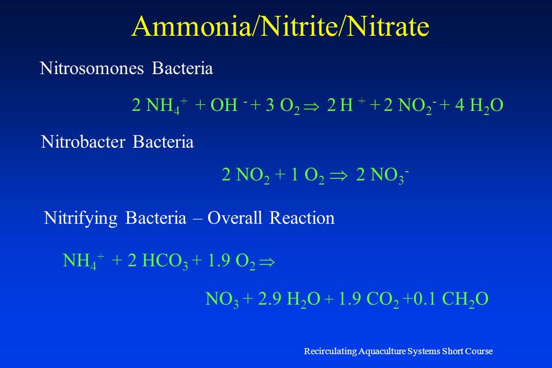 Ammonia/Nitrite/Nitrate