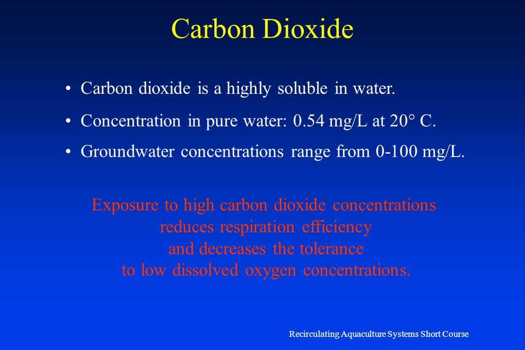 Carbon Dioxide Carbon dioxide is a highly soluble in water.