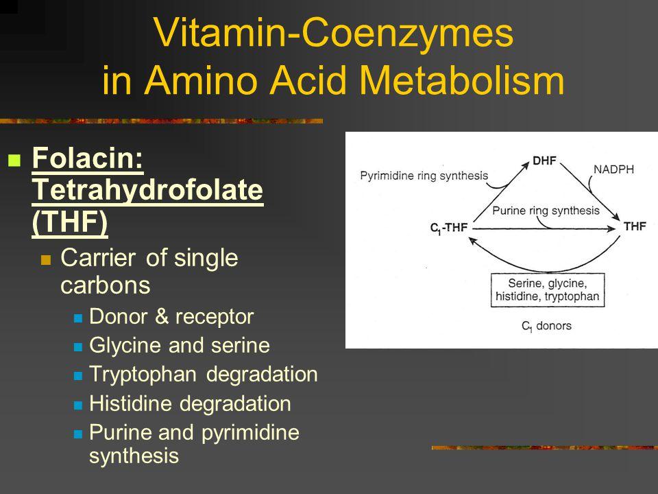 Vitamin-Coenzymes in Amino Acid Metabolism