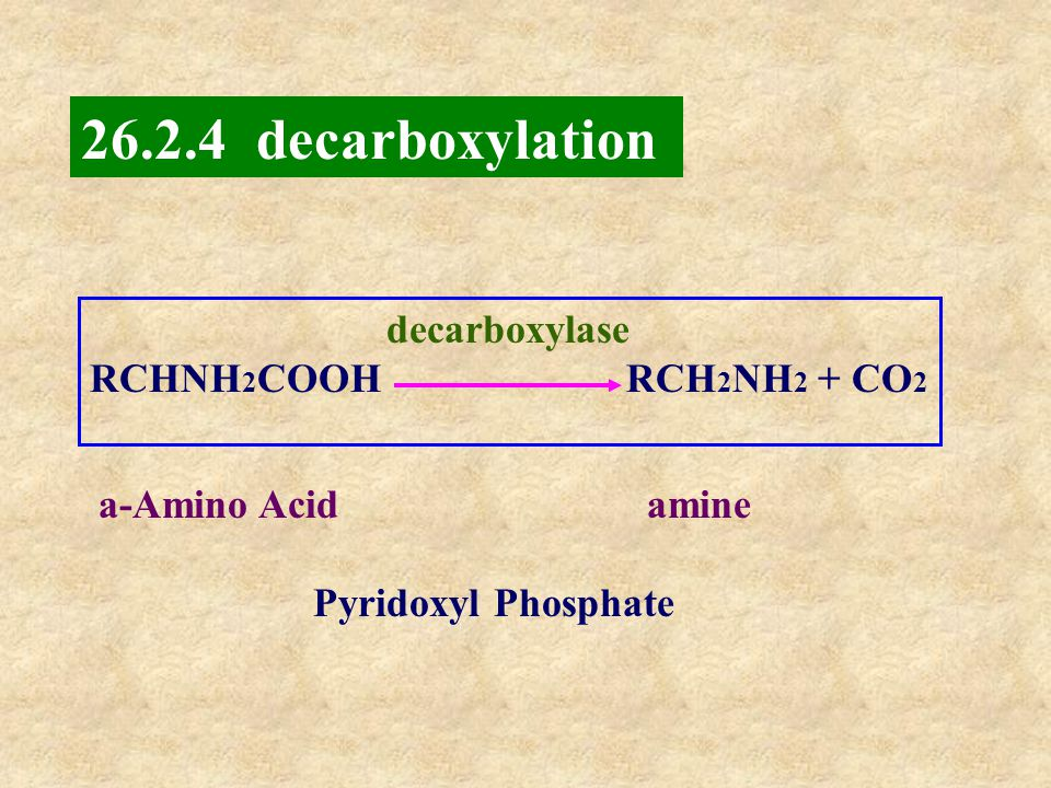 decarboxylation decarboxylase RCHNH2COOH RCH2NH2 + CO2