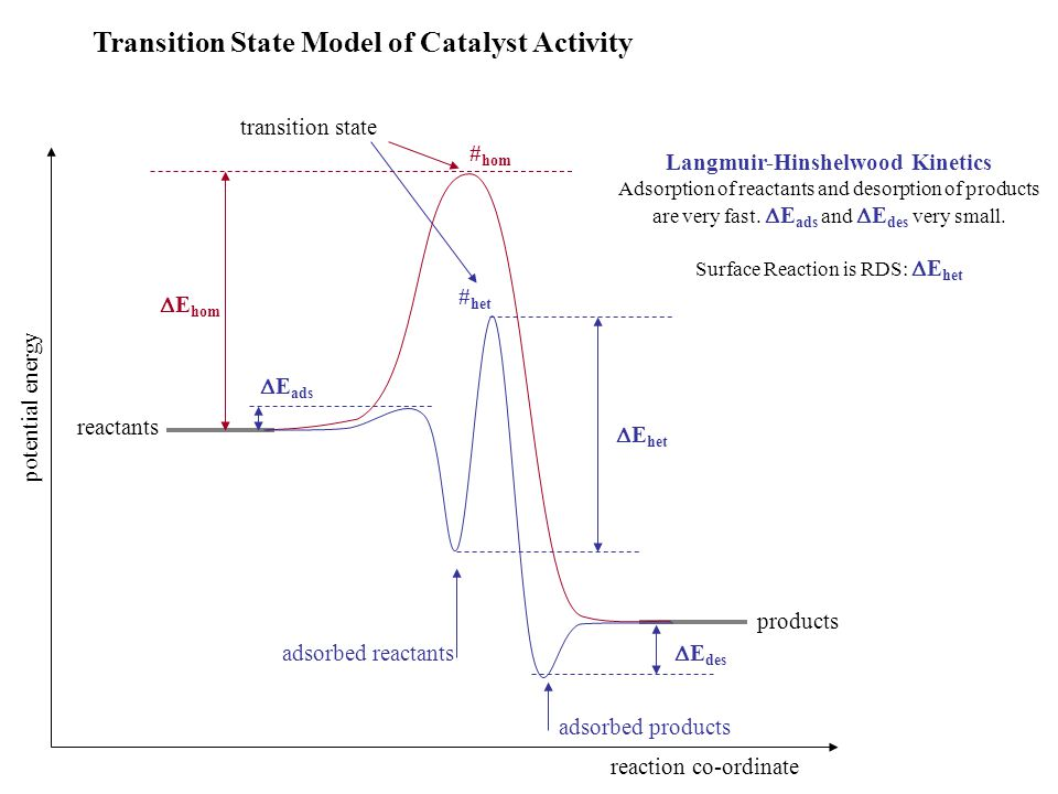 Transition State Model of Catalyst Activity