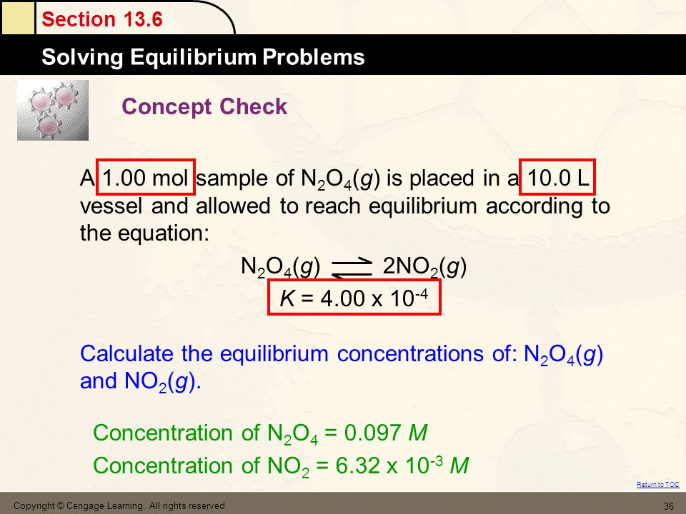 Calculate the equilibrium concentrations of: N2O4(g) and NO2(g).