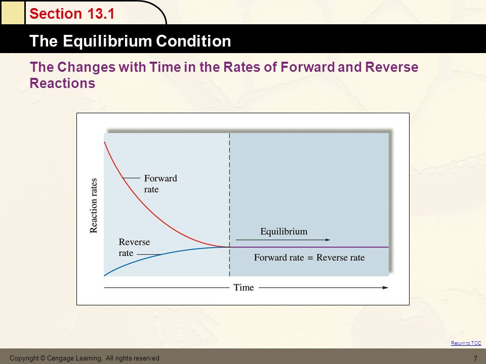 The Changes with Time in the Rates of Forward and Reverse Reactions