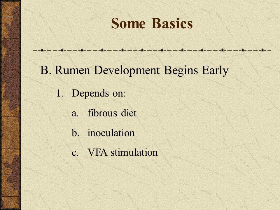 Some Basics B. Rumen Development Begins Early 1. Depends on: