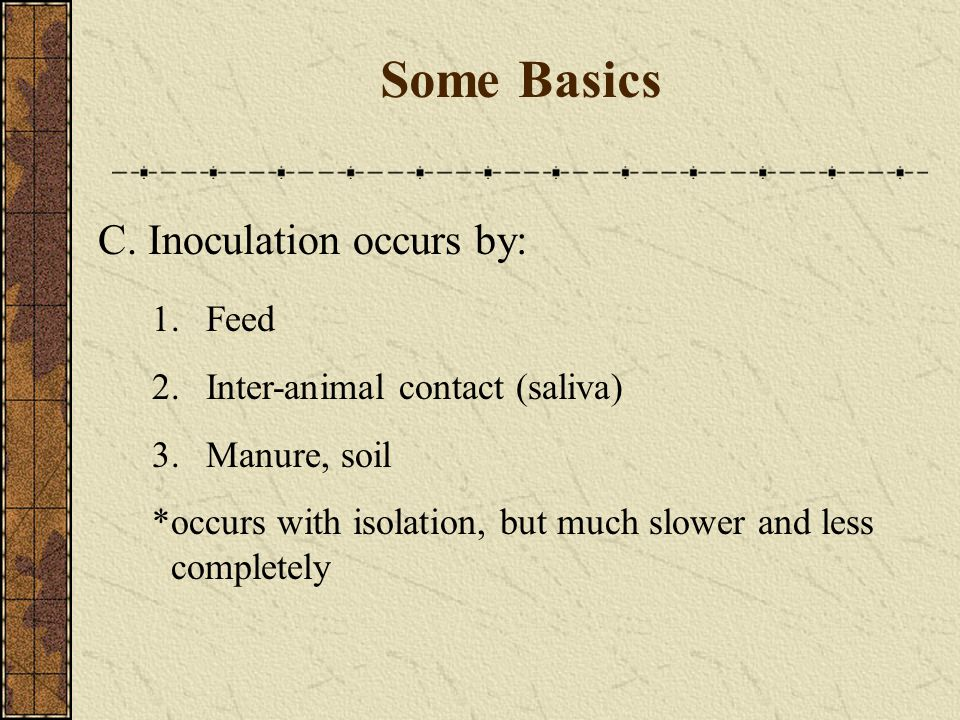 Some Basics C. Inoculation occurs by: 1. Feed