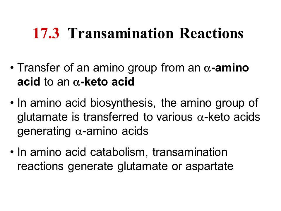 17.3 Transamination Reactions
