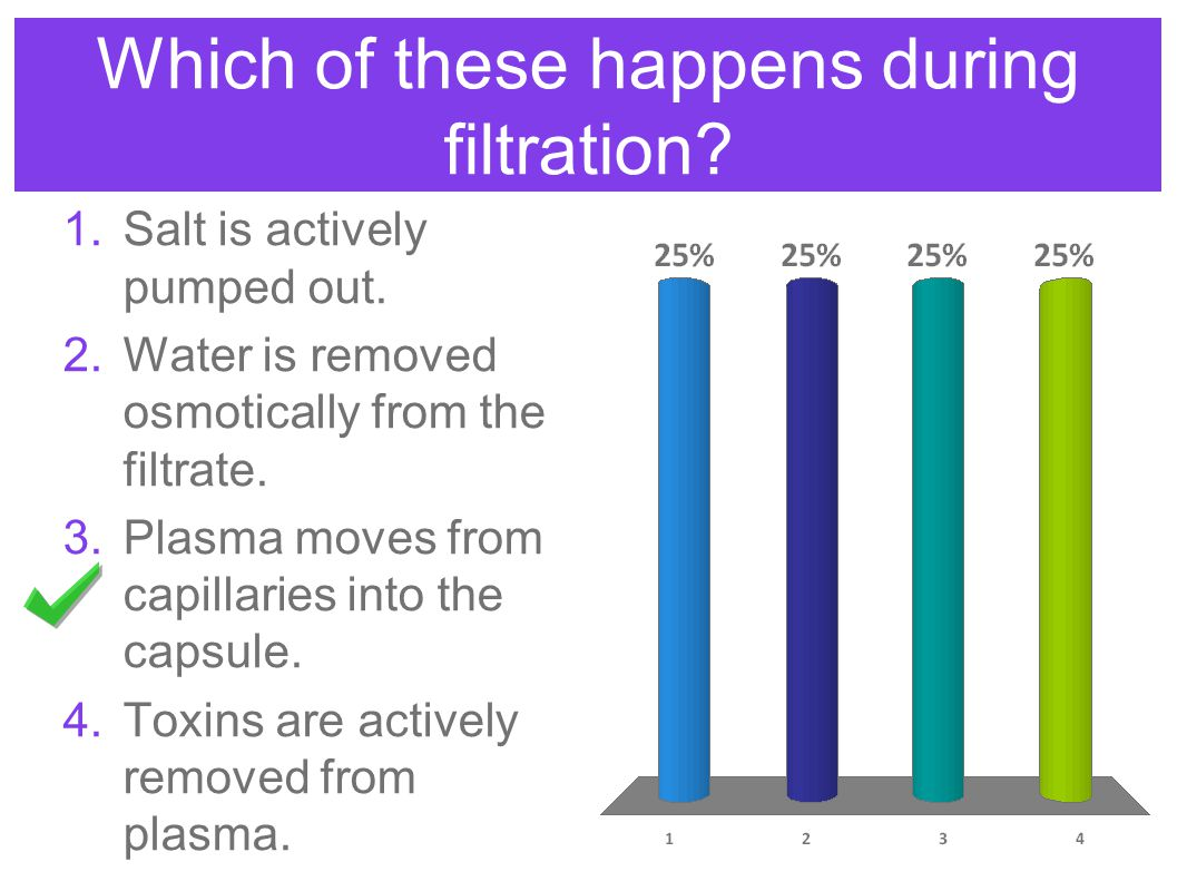 Which of these happens during filtration