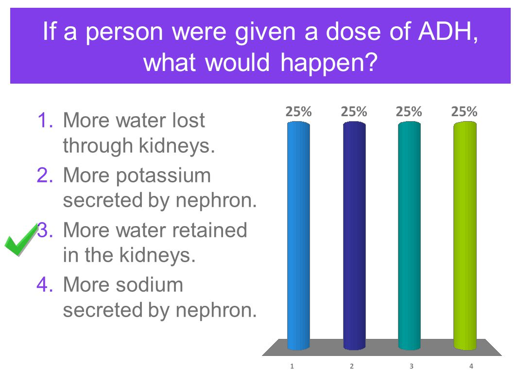 If a person were given a dose of ADH, what would happen