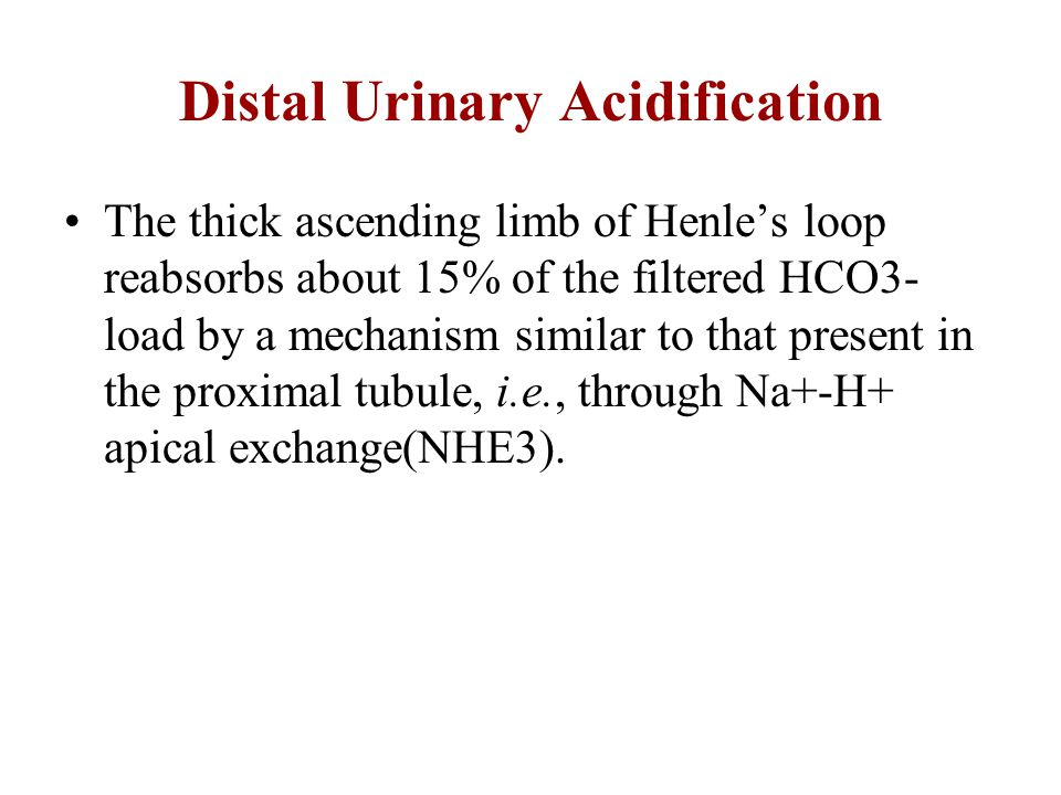Distal Urinary Acidification