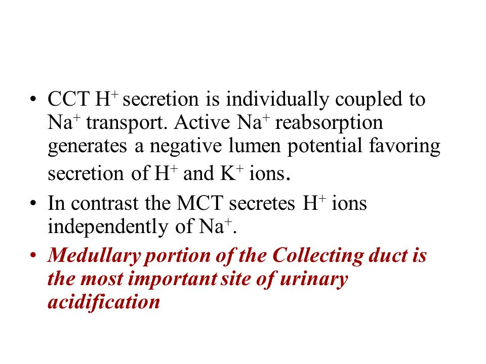 CCT H+ secretion is individually coupled to Na+ transport