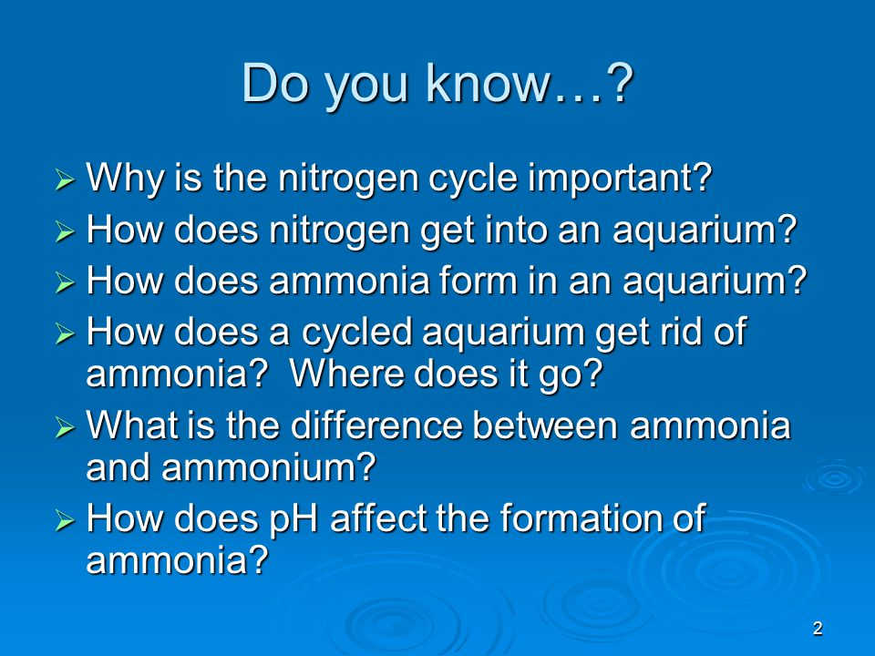Do you know… Why is the nitrogen cycle important