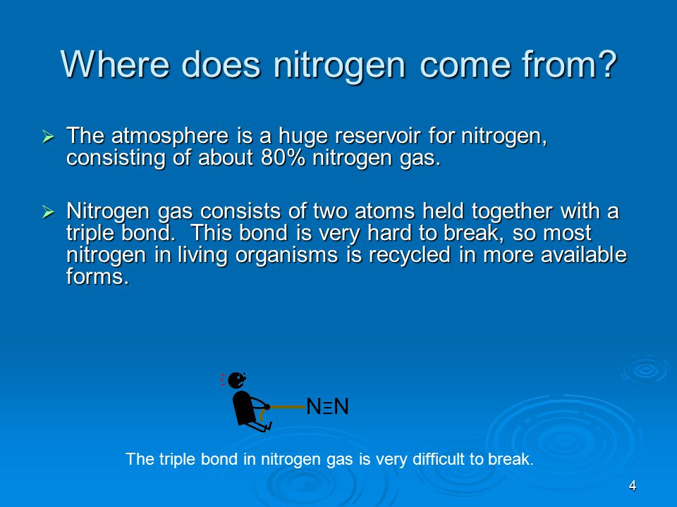 Where does nitrogen come from