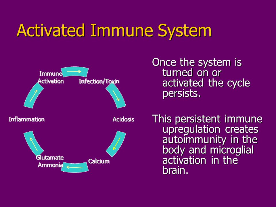 Activated Immune System