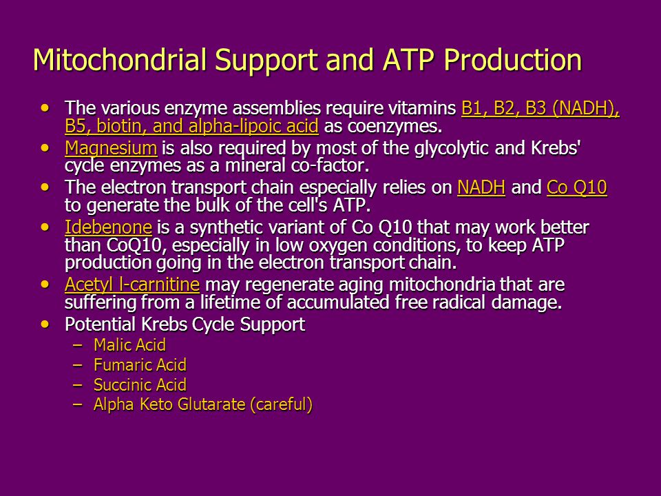 Mitochondrial Support and ATP Production