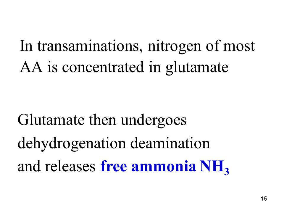 In transaminations, nitrogen of most AA is concentrated in glutamate