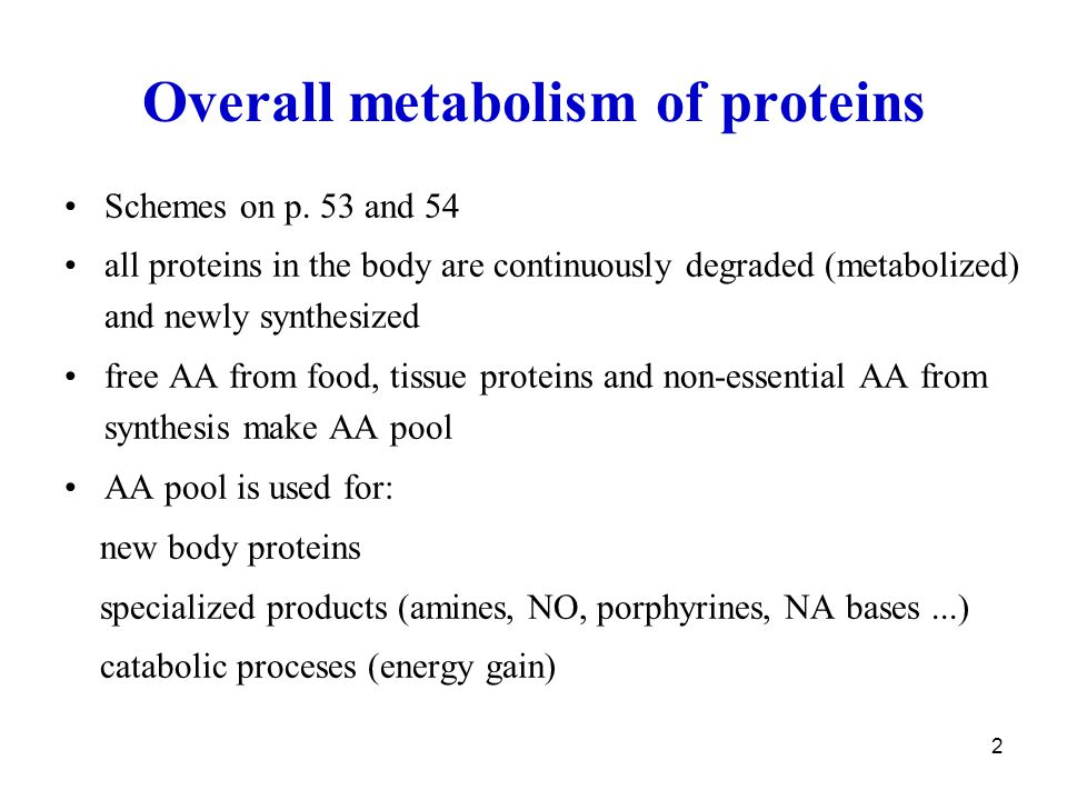Overall metabolism of proteins