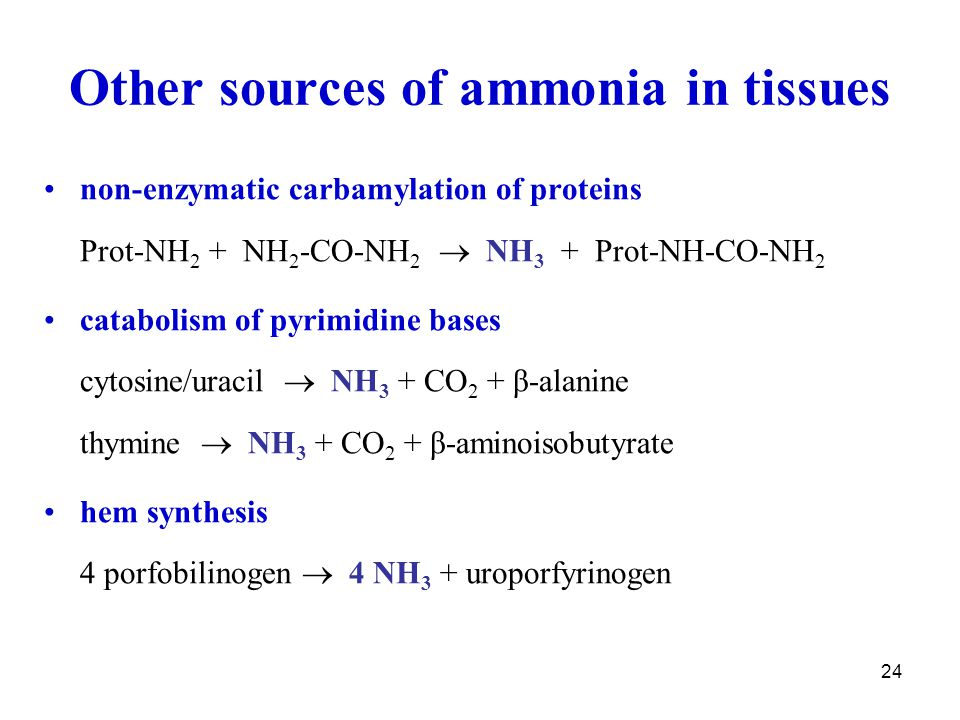 Other sources of ammonia in tissues