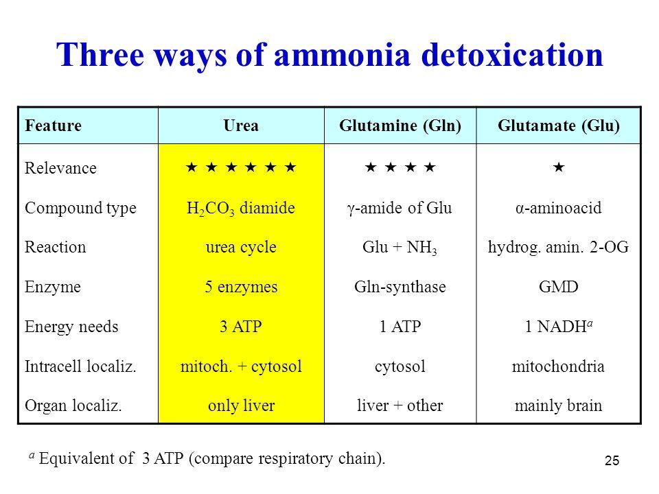 Three ways of ammonia detoxication