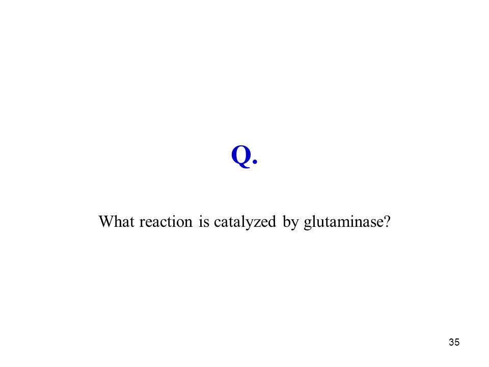 What reaction is catalyzed by glutaminase