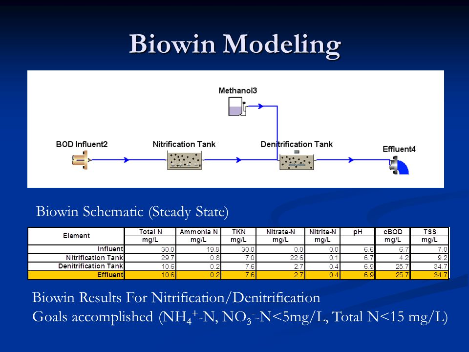 Biowin Modeling Biowin Schematic (Steady State)