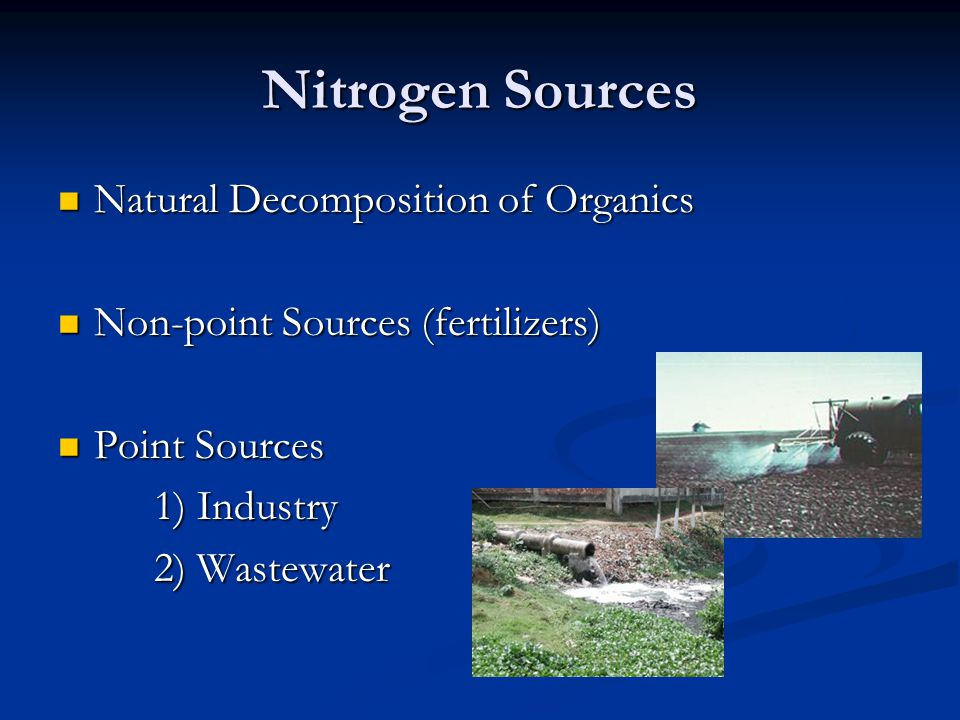 Nitrogen Sources Natural Decomposition of Organics