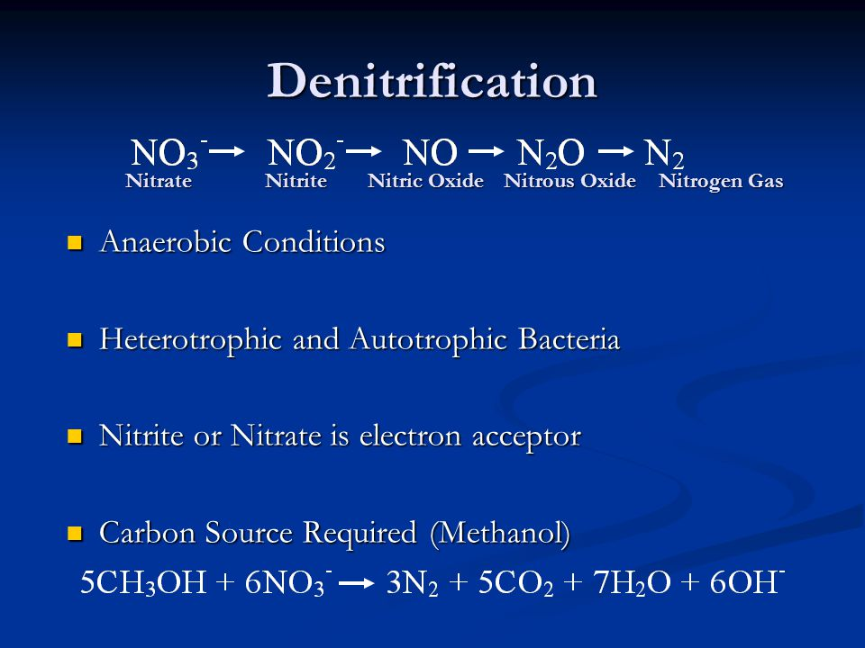 Denitrification Anaerobic Conditions