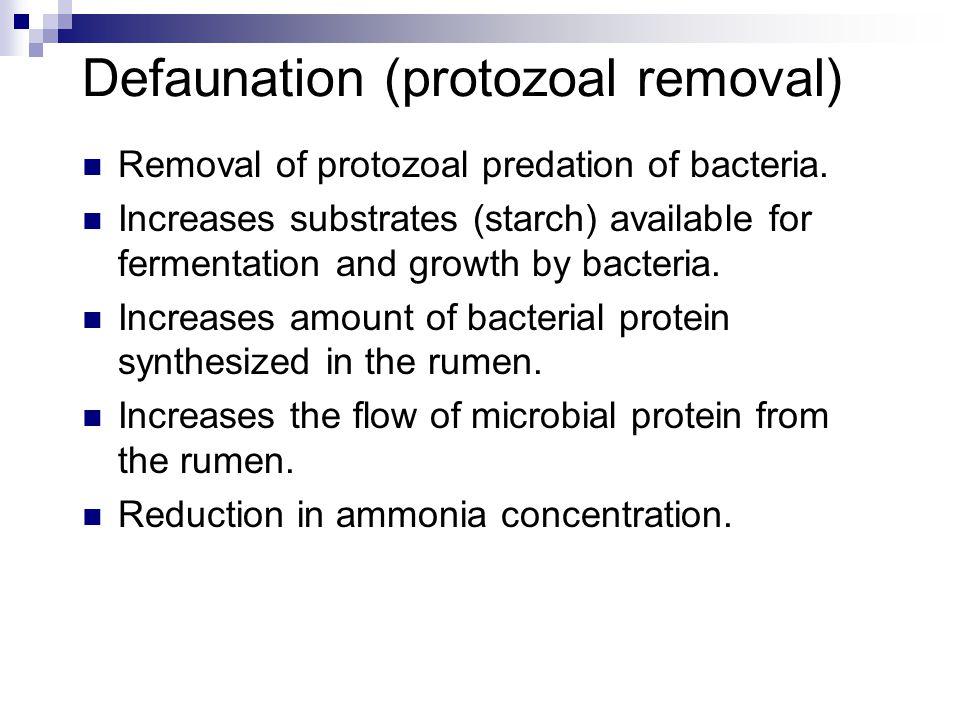 Defaunation (protozoal removal)