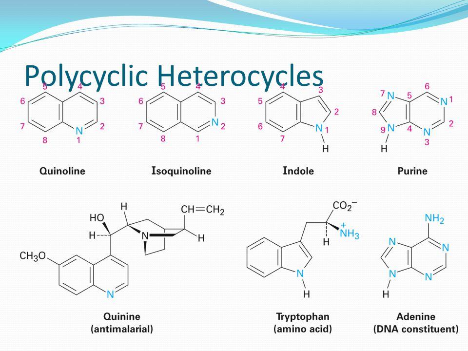 Polycyclic Heterocycles