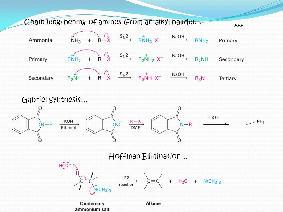 Chain lengthening of amines (from an alkyl halide)…