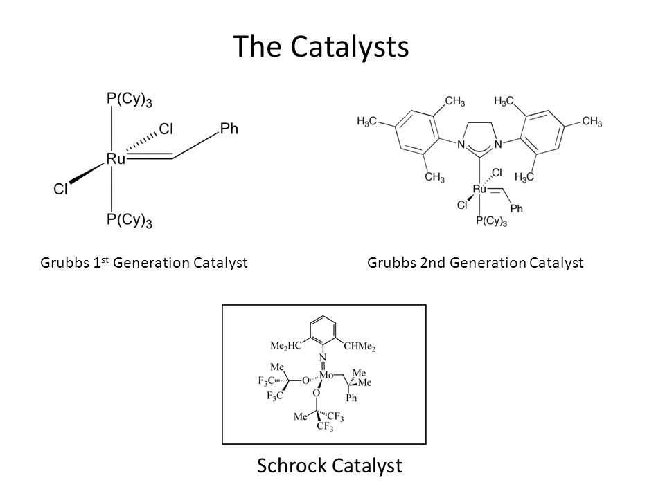 The Catalysts Schrock Catalyst Grubbs 1st Generation Catalyst