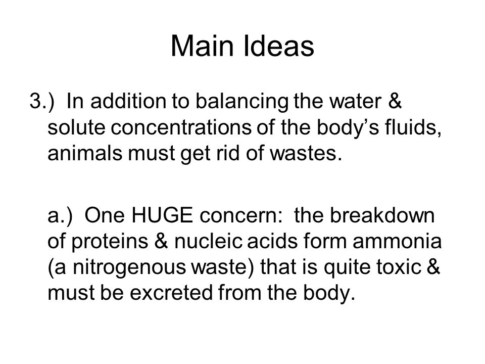 Main Ideas 3.) In addition to balancing the water & solute concentrations of the body's fluids, animals must get rid of wastes.