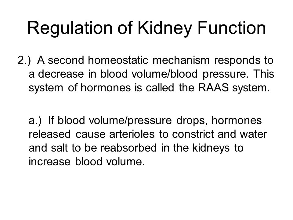 Regulation of Kidney Function