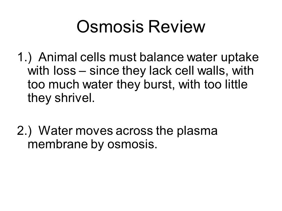 Osmosis Review