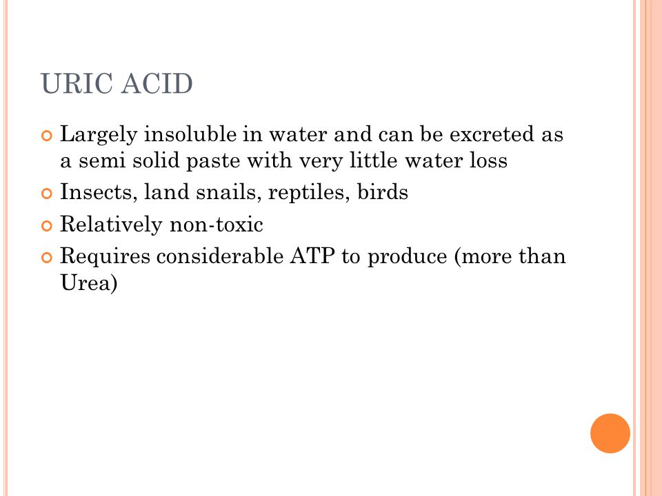 URIC ACID Largely insoluble in water and can be excreted as a semi solid paste with very little water loss.