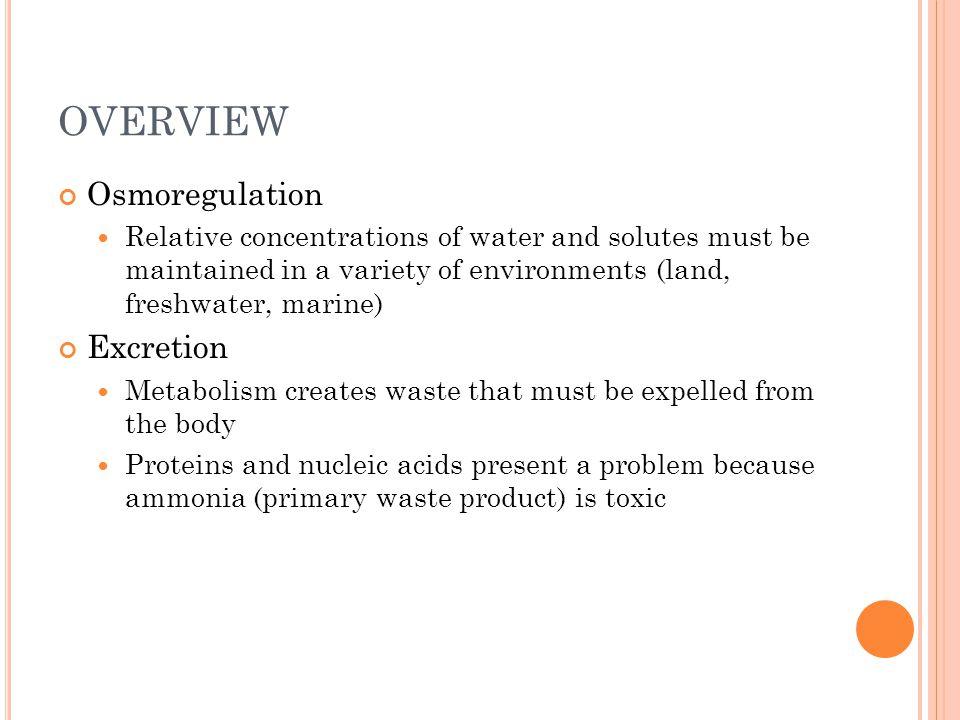 OVERVIEW Osmoregulation Excretion