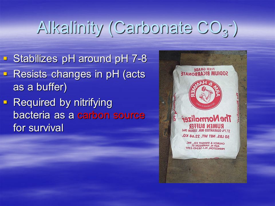 Alkalinity (Carbonate CO3-)