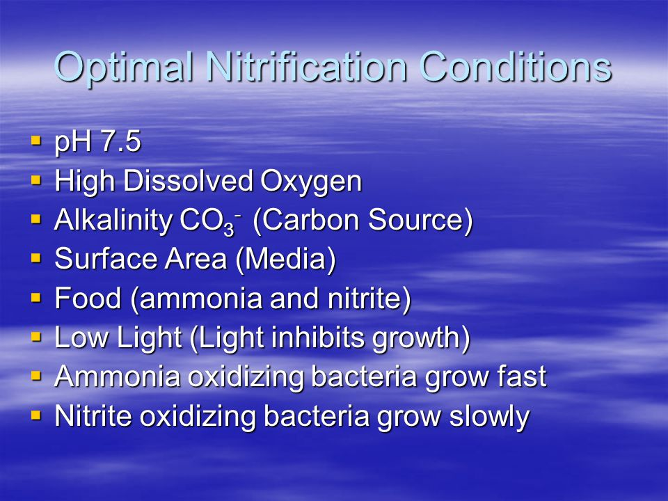 Optimal Nitrification Conditions