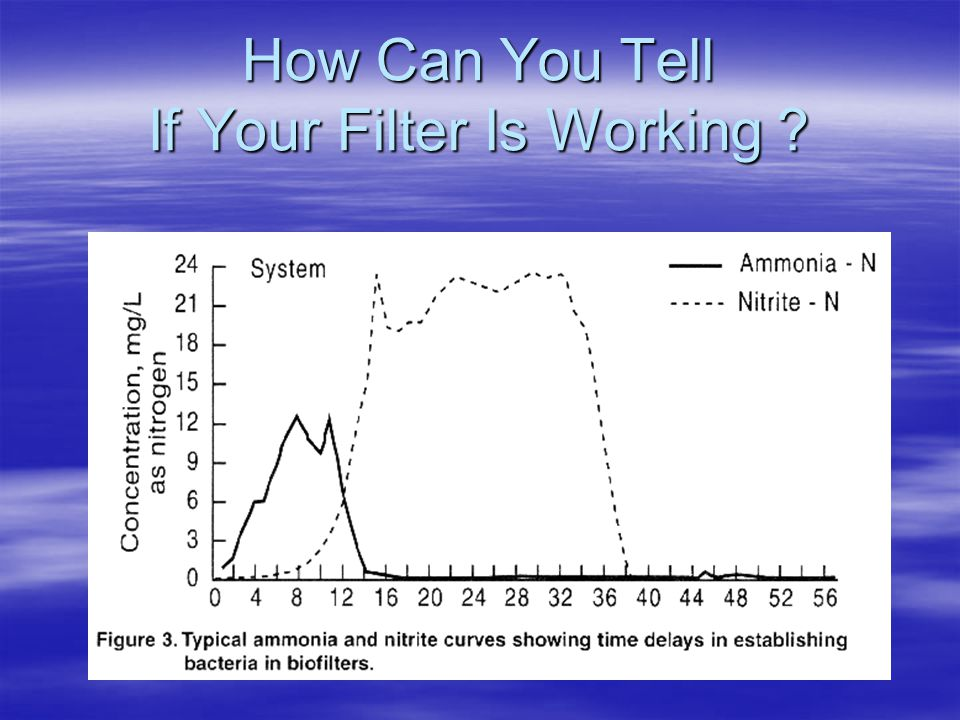 How Can You Tell If Your Filter Is Working