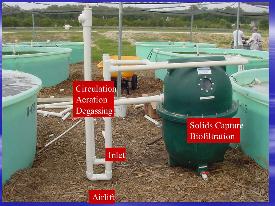Circulation Aeration Degassing Solids Capture Biofiltration Inlet Airlift
