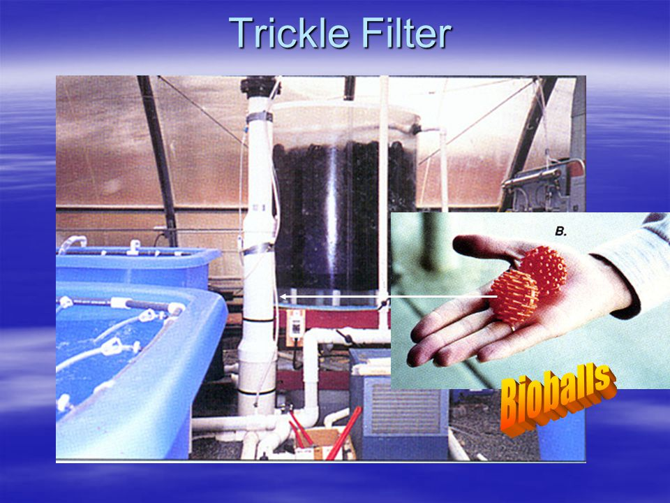 Trickle Filter Bioballs