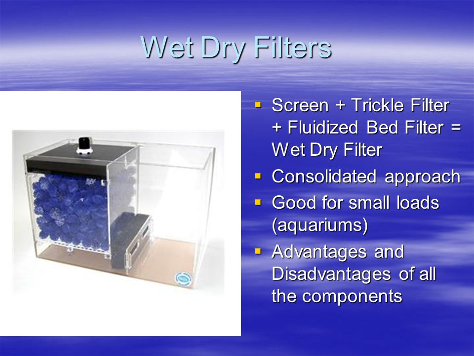 Wet Dry Filters Screen + Trickle Filter + Fluidized Bed Filter = Wet Dry Filter. Consolidated approach.
