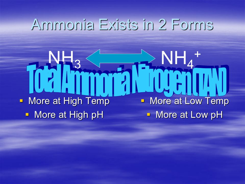 Ammonia Exists in 2 Forms