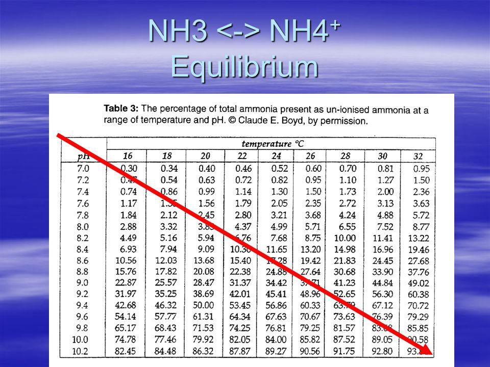 NH3 <-> NH4+ Equilibrium