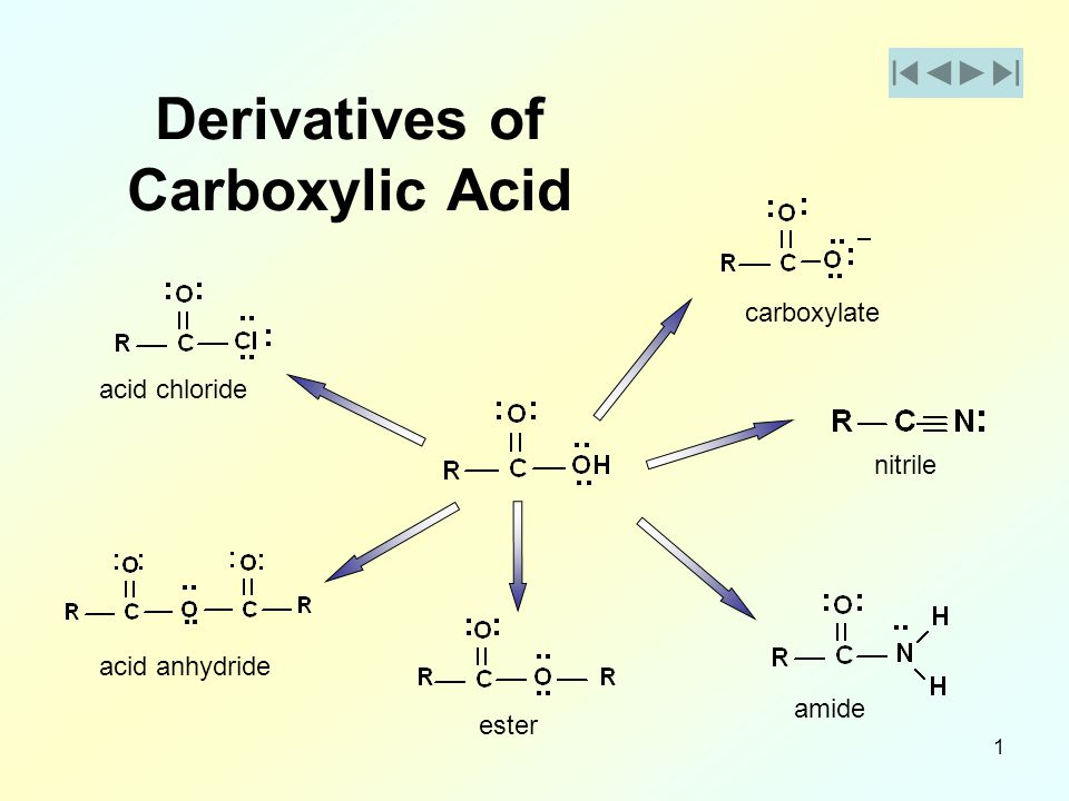 Carboxylic Acid Bing Images
