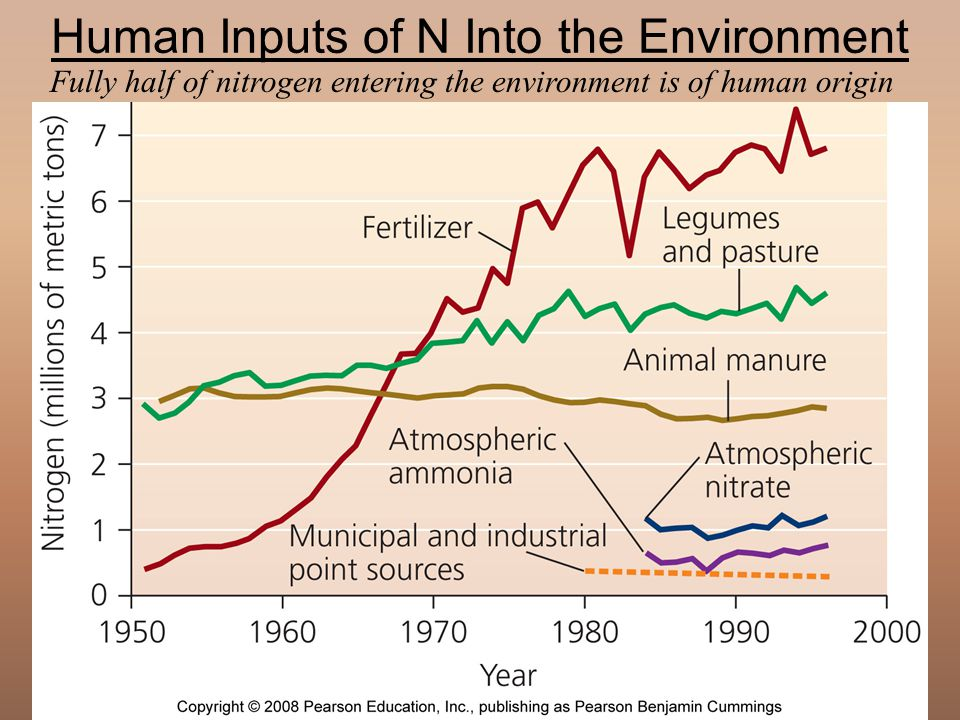 Human Inputs of N Into the Environment
