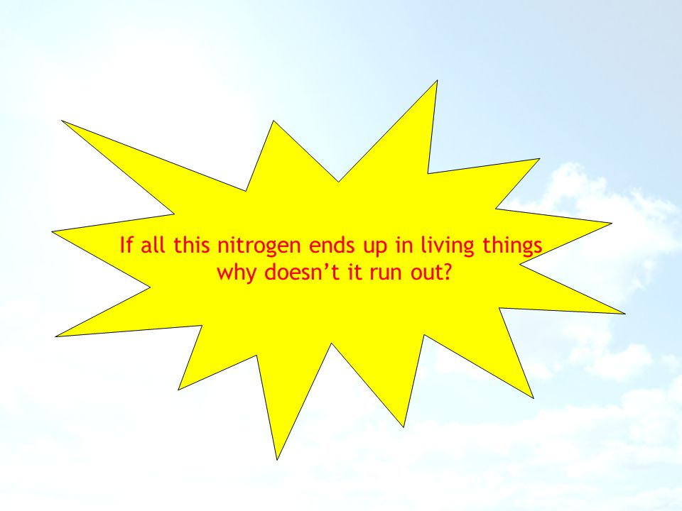 If all this nitrogen ends up in living things
