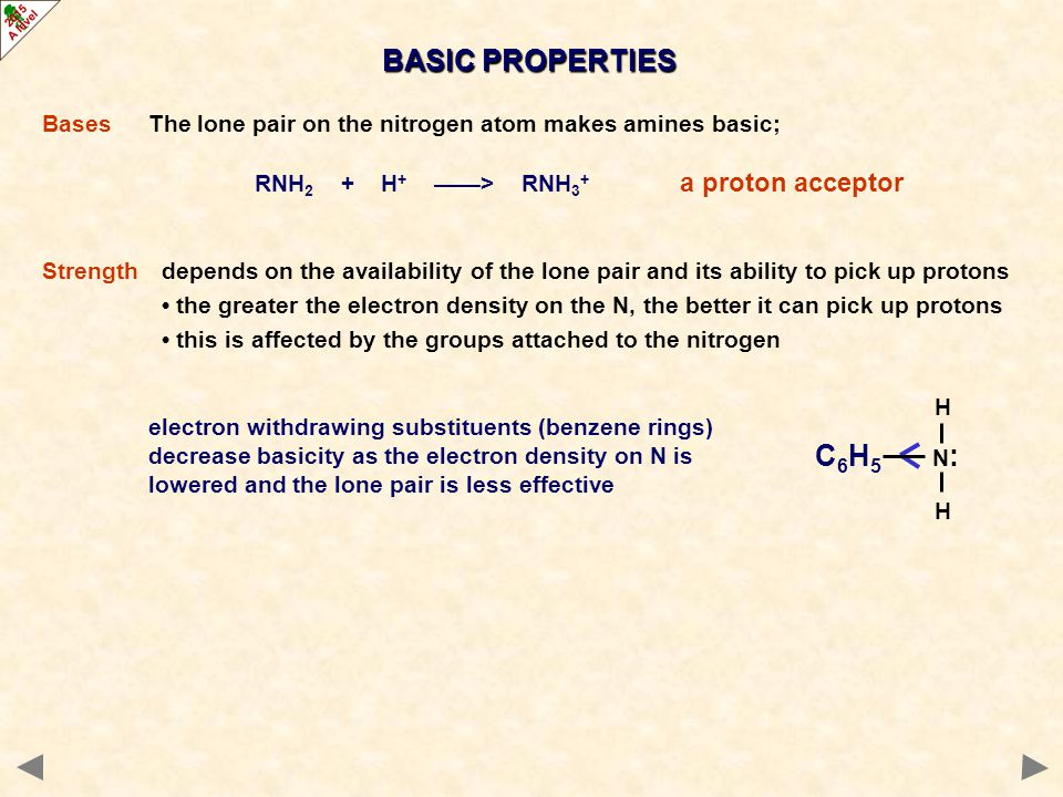 BASIC PROPERTIES Bases The lone pair on the nitrogen atom makes amines basic; RNH2 + H+ ——> RNH3+ a proton acceptor.