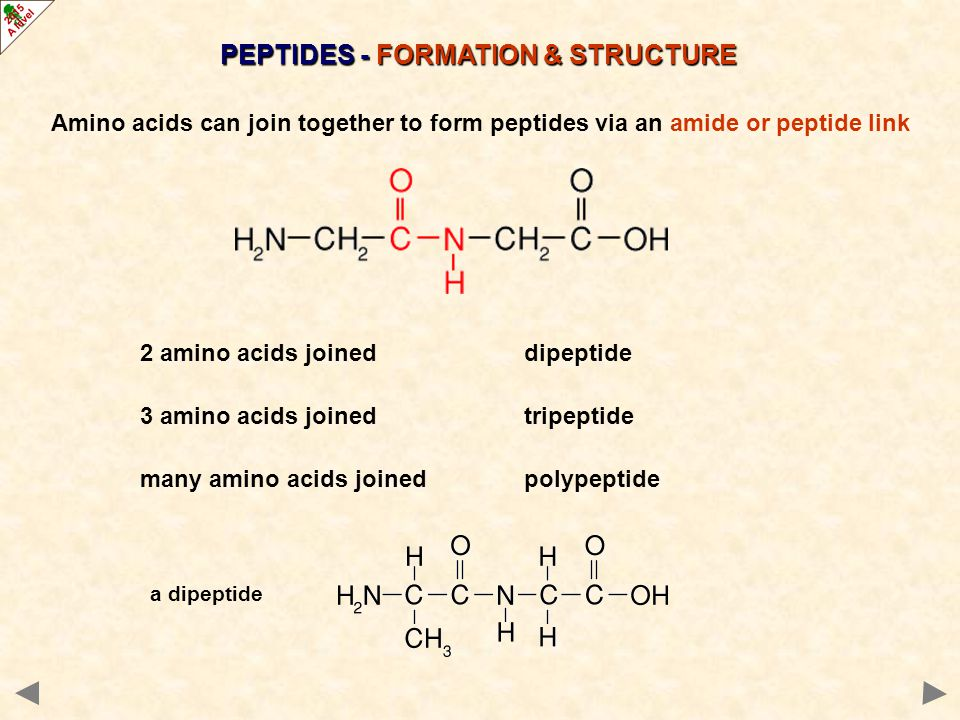 PEPTIDES - FORMATION & STRUCTURE