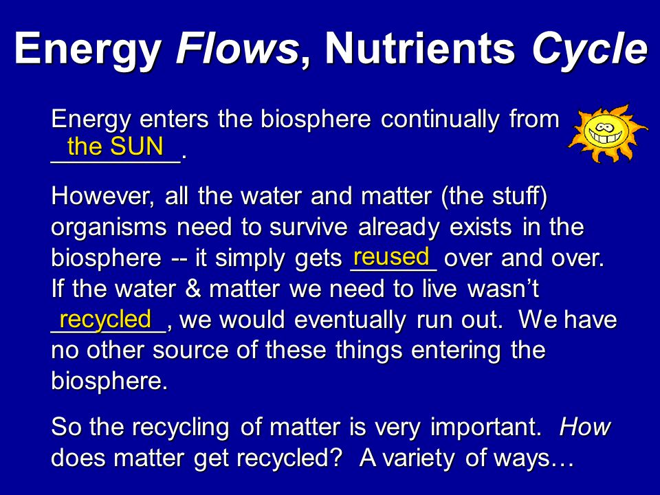 Energy Flows, Nutrients Cycle